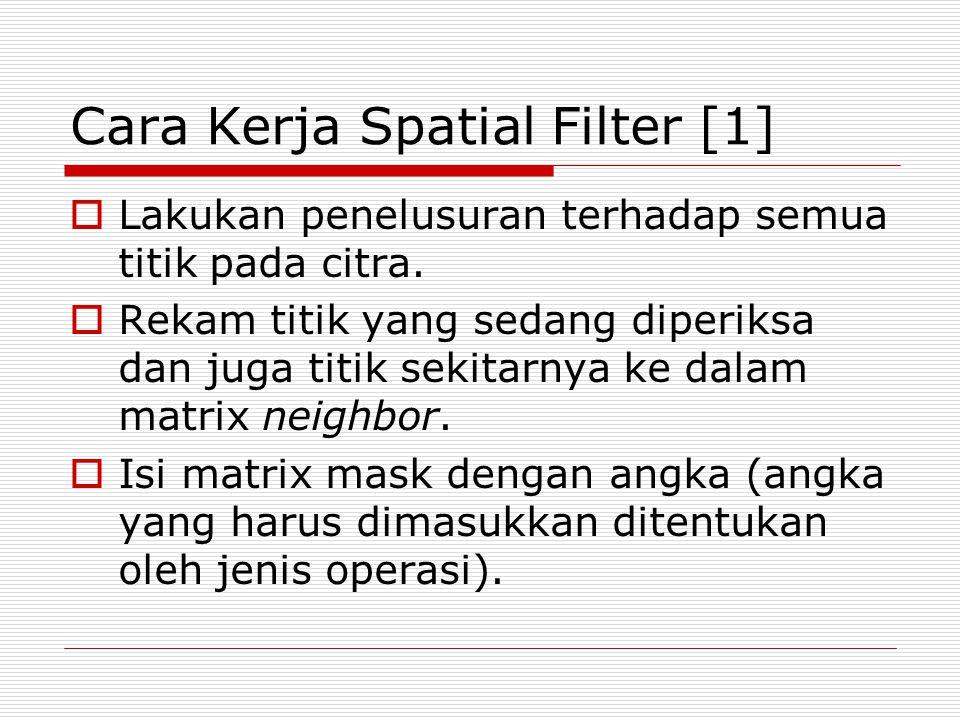 Cara Kerja Spatial Filter [1]